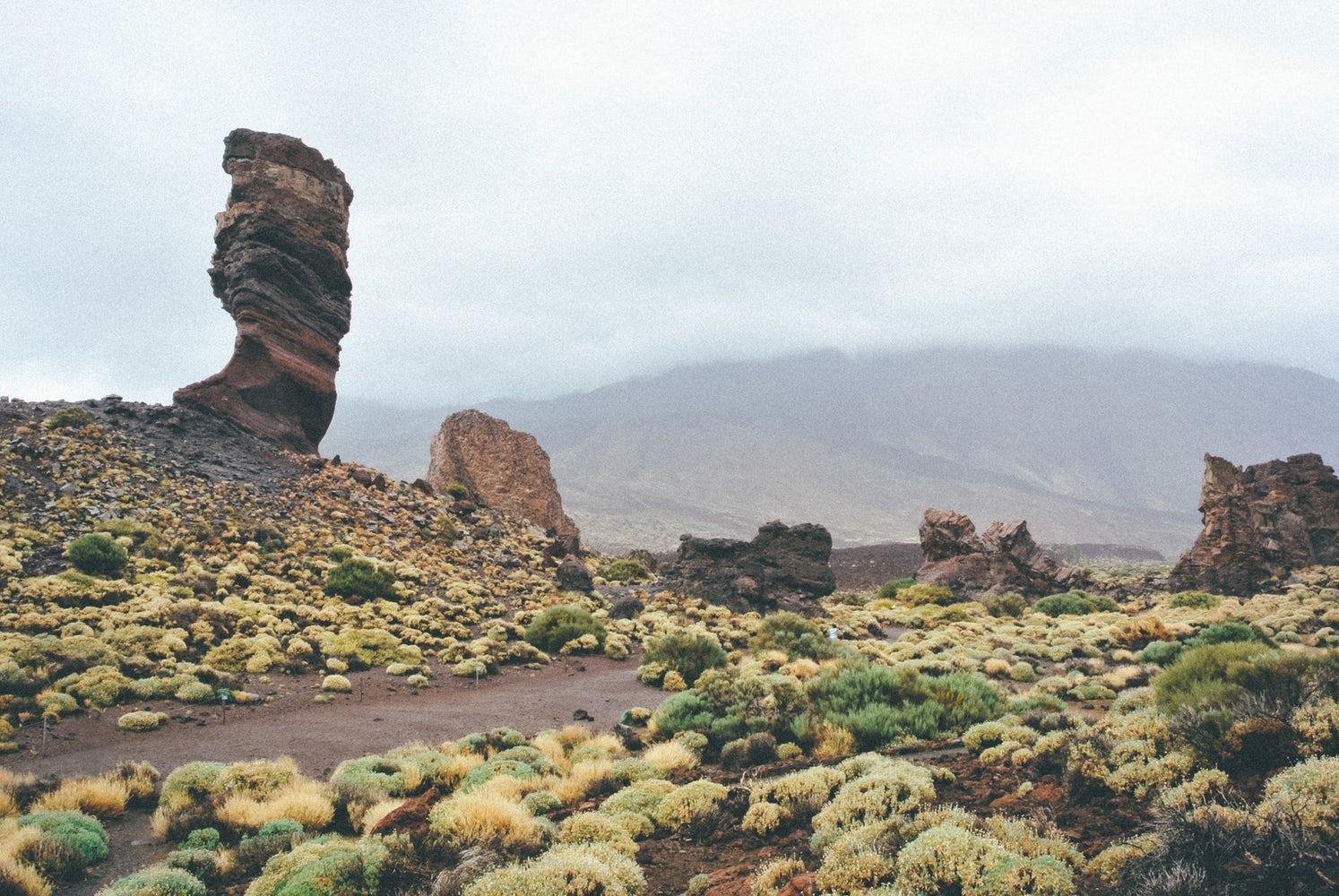 Tenerife hannatalks