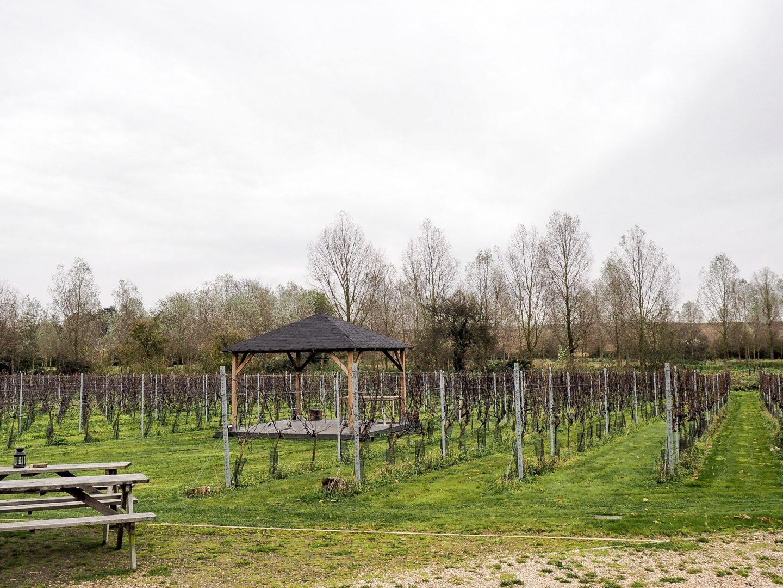 Essex Vineyard Tours With Visit Essex