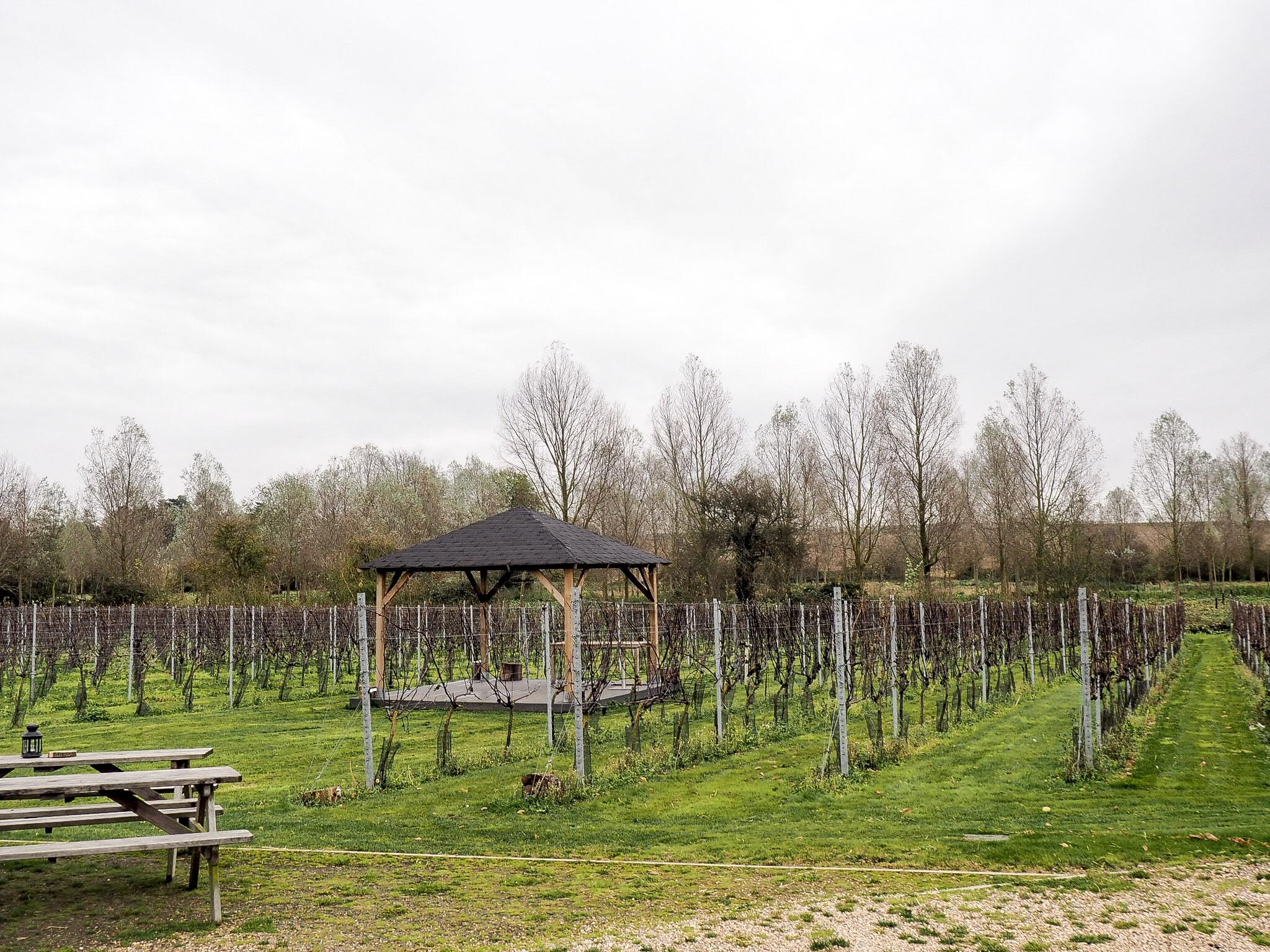 West Street Vineyards