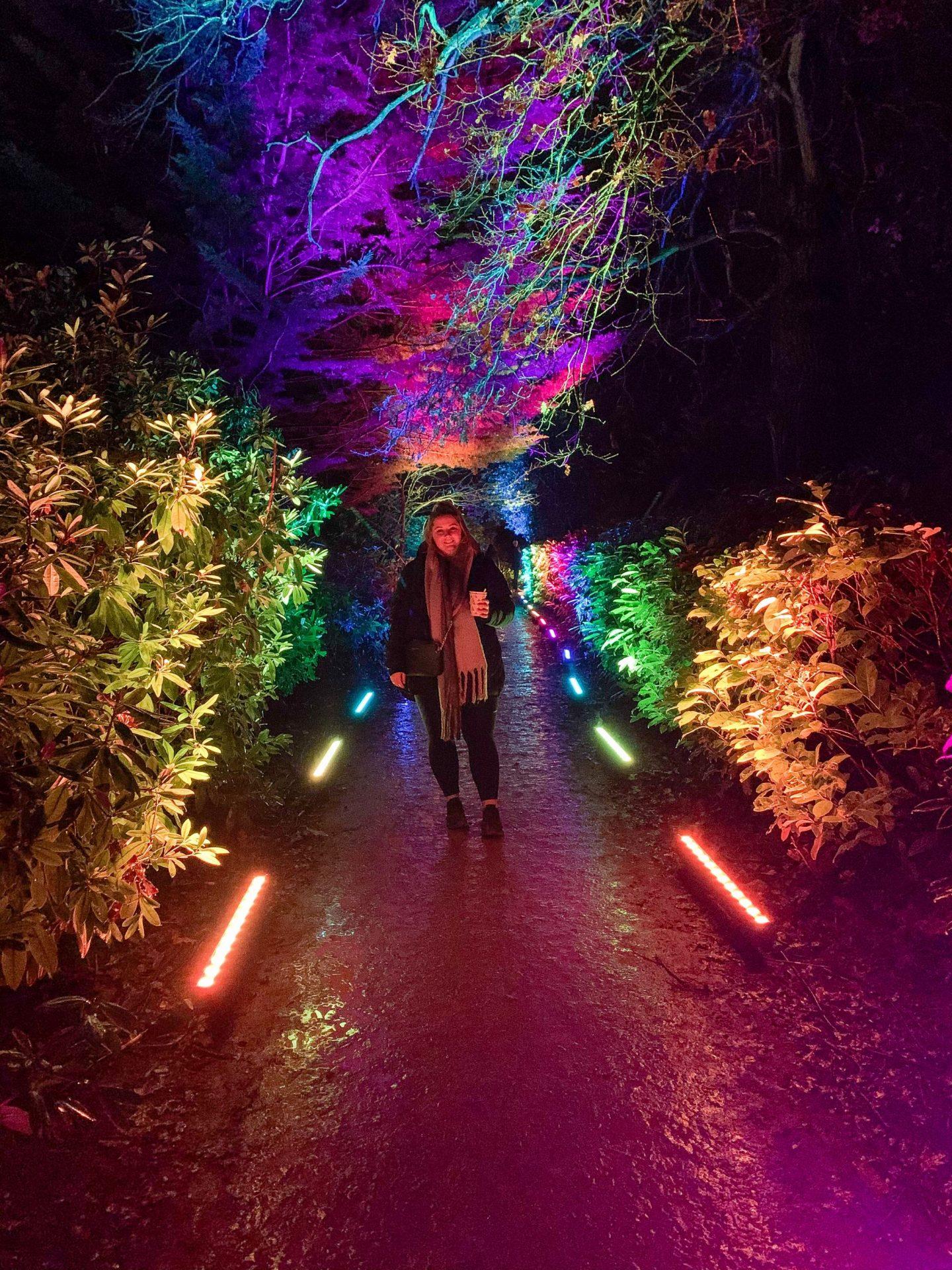 Hylands Park Outdoor Light Trail
