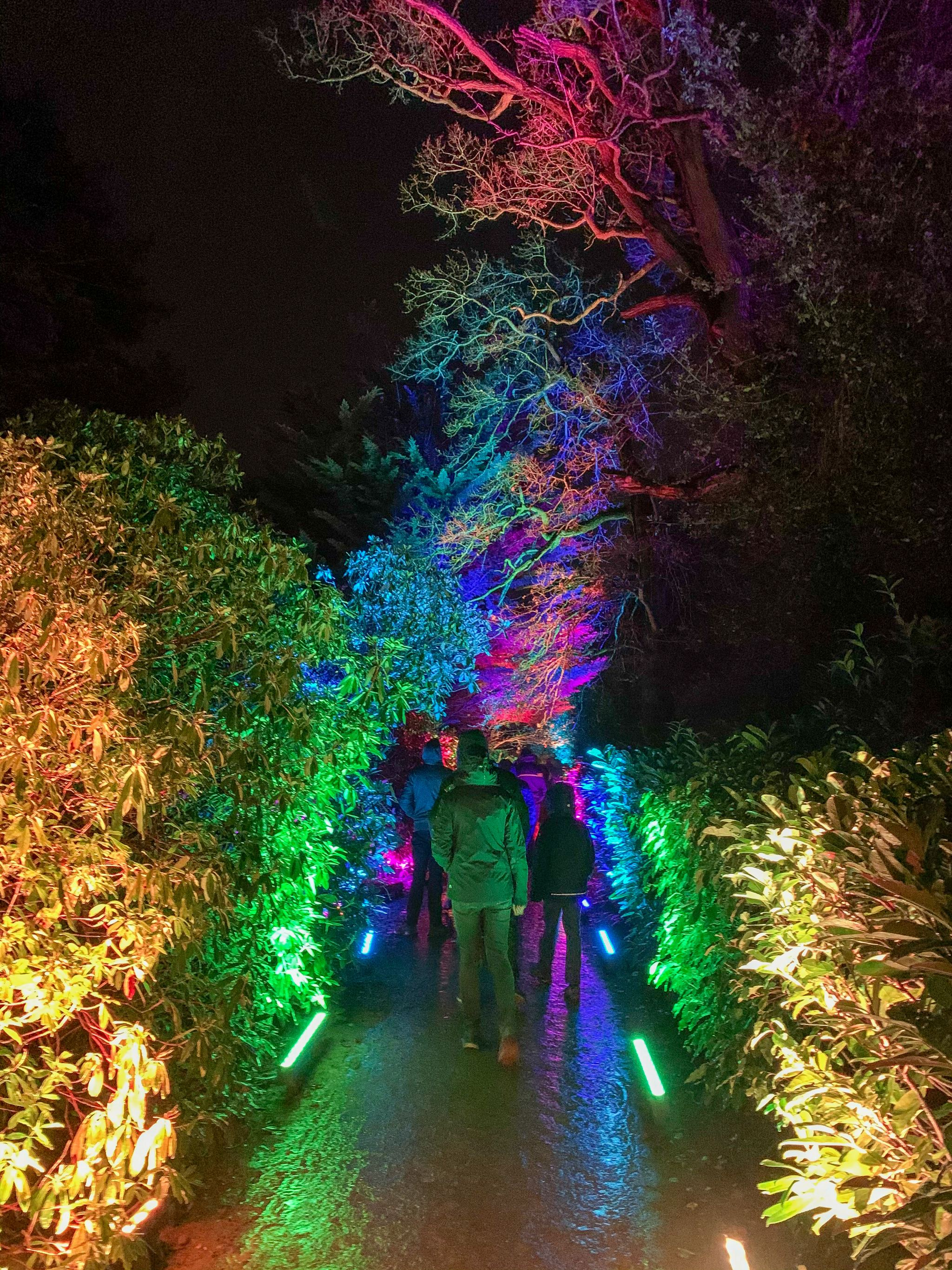 hyland park lights