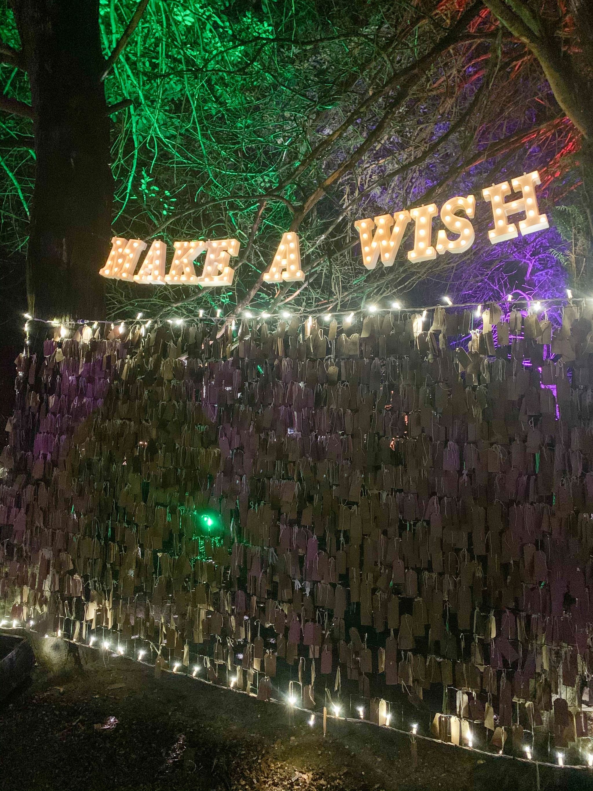hylands park christmas lights