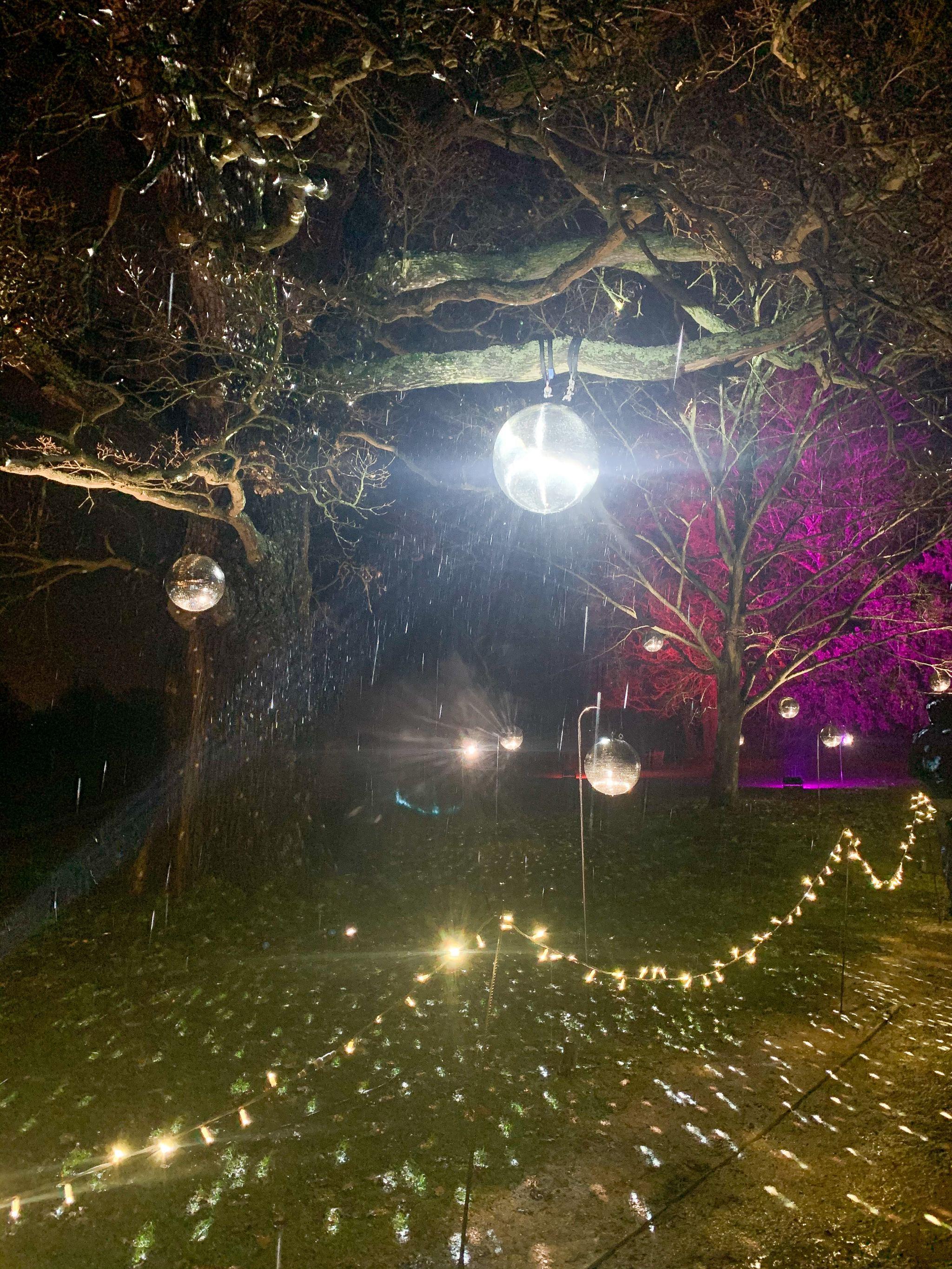 hylands park lights